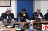 Consiglio Comunale del 12/02/2014